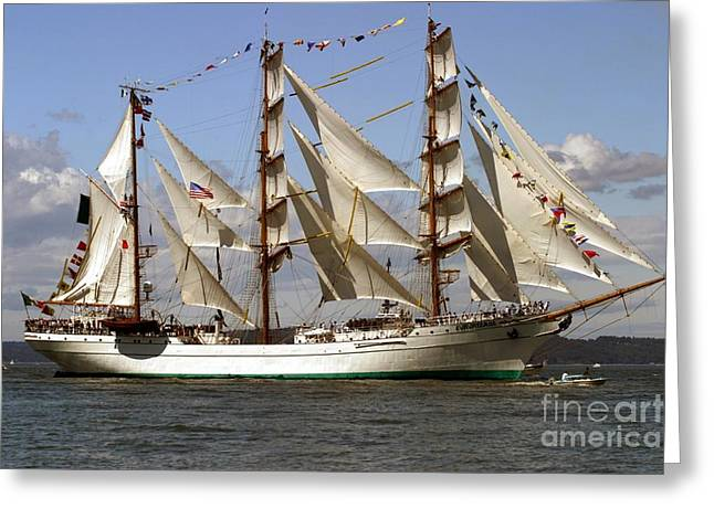 Yatch Greeting Cards - Tall Ship Greeting Card by Robert  Torkomian