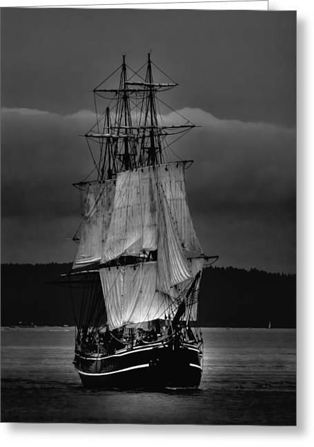 Tall Ships Greeting Cards - Tall Ships HMS Bounty 2 Greeting Card by David Patterson