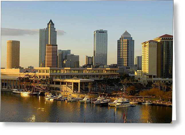 Tampa Bay Greeting Cards - Tampa Bay and Gasparilla Greeting Card by David Lee Thompson
