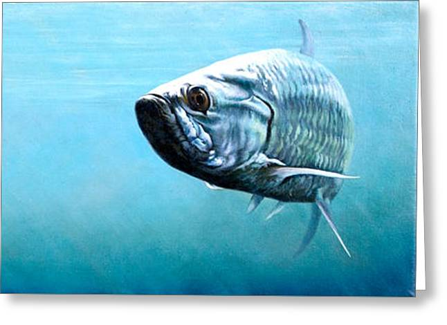 Tampa Bay Tarpon Greeting Card by Joan Garcia
