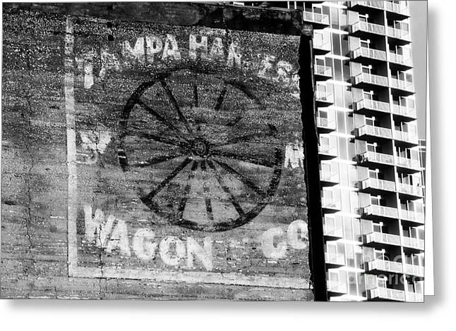Old And New Photographs Greeting Cards - Tampa Harness Wagon N Company Greeting Card by David Lee Thompson