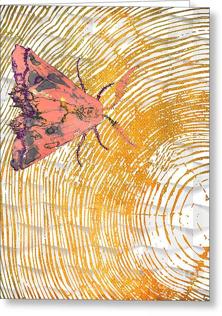 Nature Study Greeting Cards - Tangerine Moth Greeting Card by B Campbell