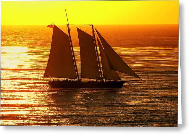 Schooner Greeting Cards - Tangerine Sails Greeting Card by Karen Wiles
