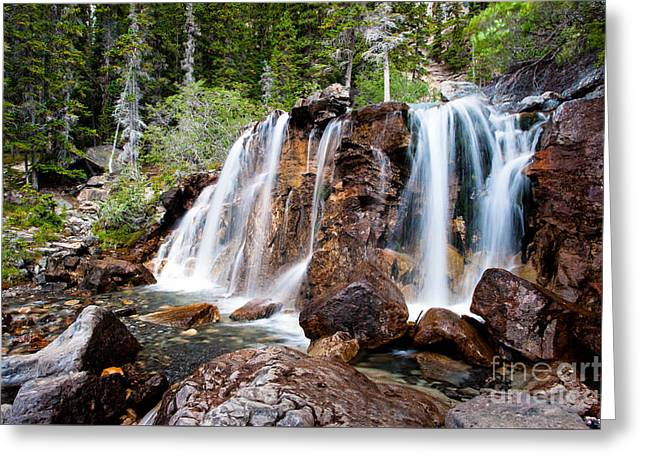 Water Flowing Greeting Cards - Tangle Creek Falls Greeting Card by Peter Wey