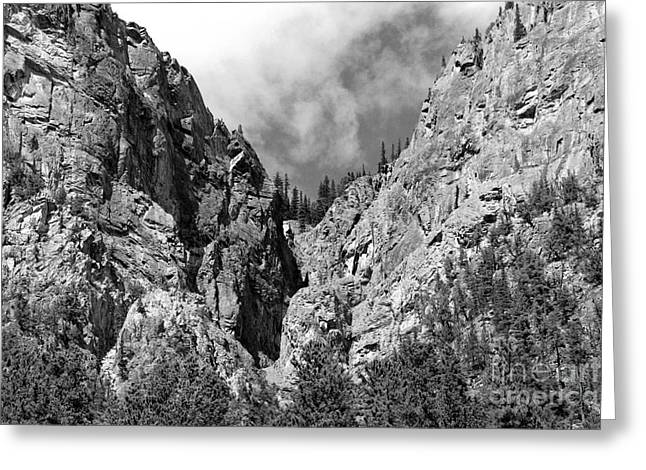 Mountain Valley Greeting Cards - Tangle Creek  Greeting Card by Peter Jamieson