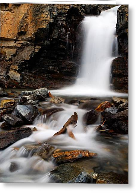 Water Flowing Greeting Cards - Tangle Falls Closeup 2 Greeting Card by Larry Ricker