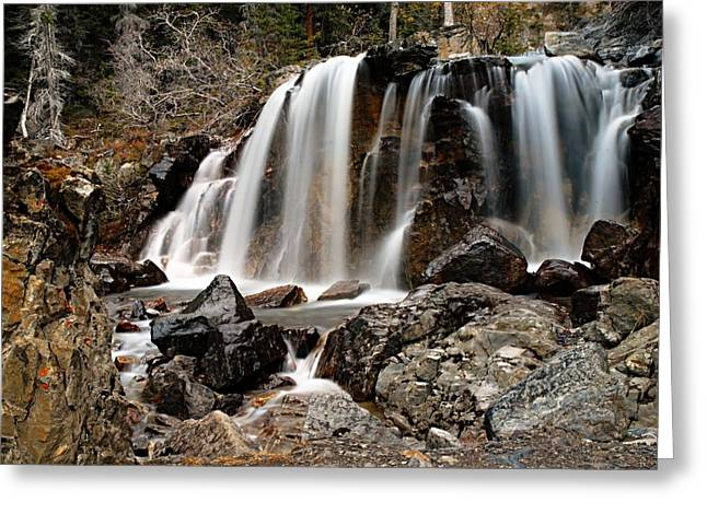 Tangle Falls Closeup 5 Greeting Card by Larry Ricker