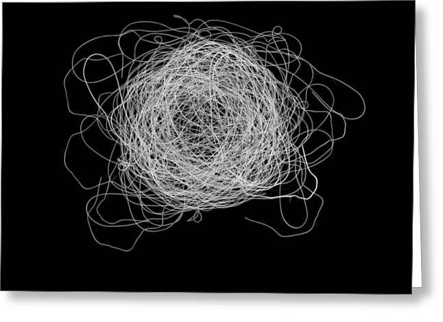 Tangled And Twisted Greeting Card by Scott Norris