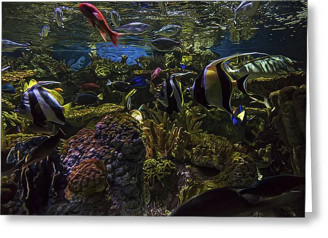 Aquarium Fish Greeting Cards - Tank Life Greeting Card by Janet Fikar