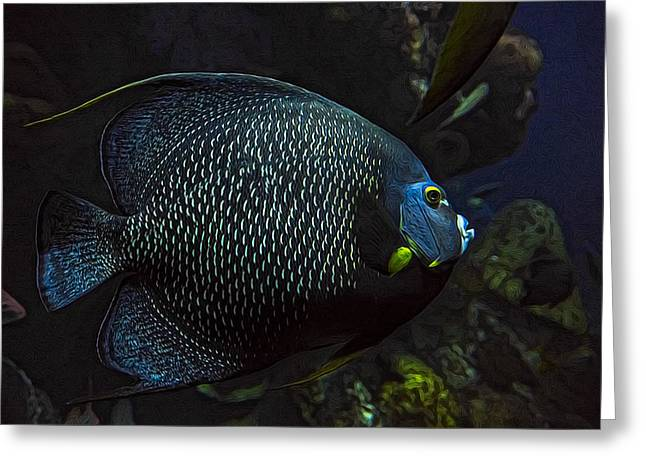 Aquarium Fish Greeting Cards - Tanked 2 Greeting Card by Janet Fikar