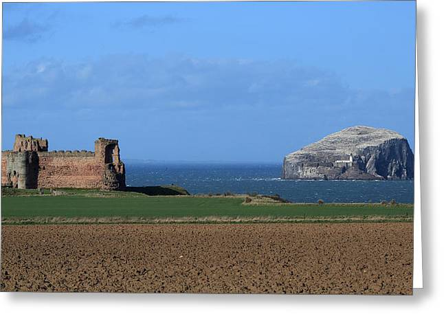 Seabirds Greeting Cards - Tantallon Castle and the Bass Rock Greeting Card by Maria Gaellman