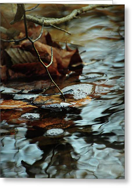 Intuition Greeting Cards - Tapping into the Stream Greeting Card by Rebecca Sherman
