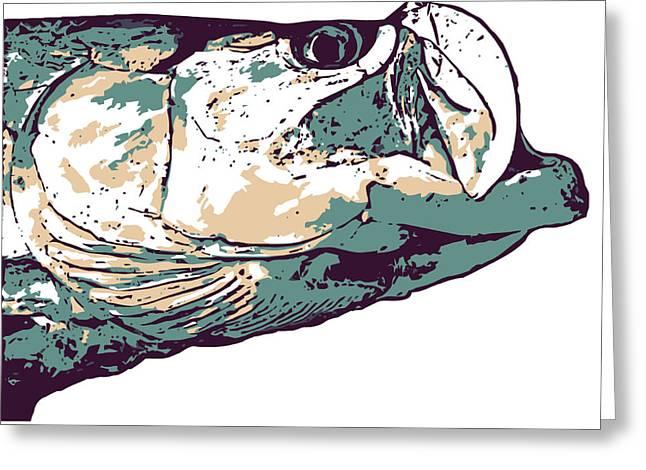 Florida Gators Mixed Media Greeting Cards - Tarpon Artwork Greeting Card by David Danforth