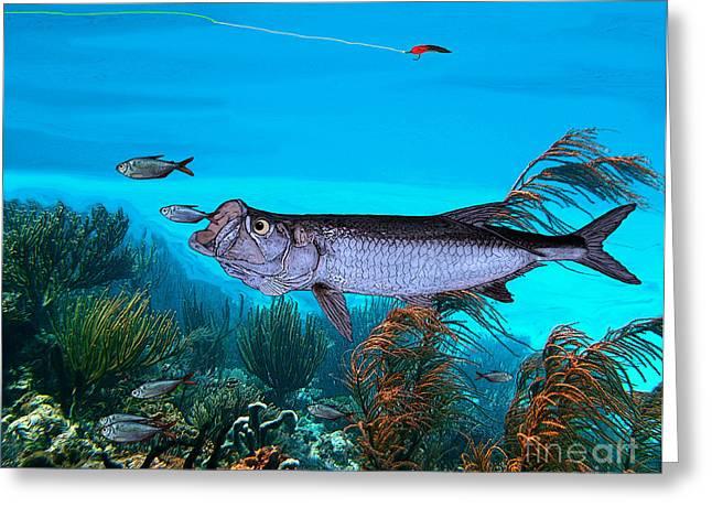 Fly Fishing Print Greeting Cards - Tarpon Greeting Card by Ralph Martens