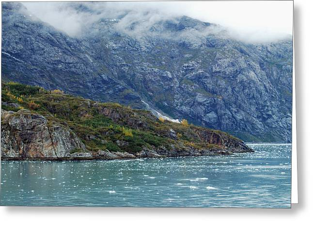 Glacier Bay Greeting Cards - Tarr Inlet Greeting Card by Michael Peychich