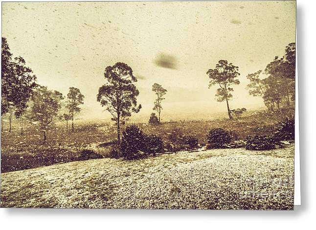 Tasmanian Blizzard Greeting Card by Jorgo Photography - Wall Art Gallery