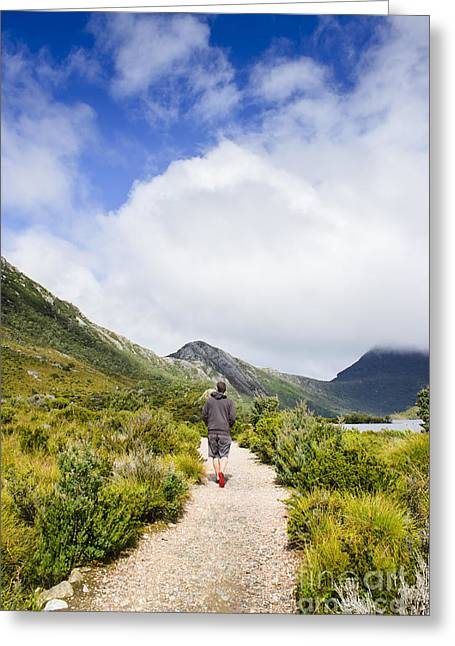 Cradle-mountain Greeting Cards - Tasmanian man hiking along a scenic mountain trail Greeting Card by Ryan Jorgensen