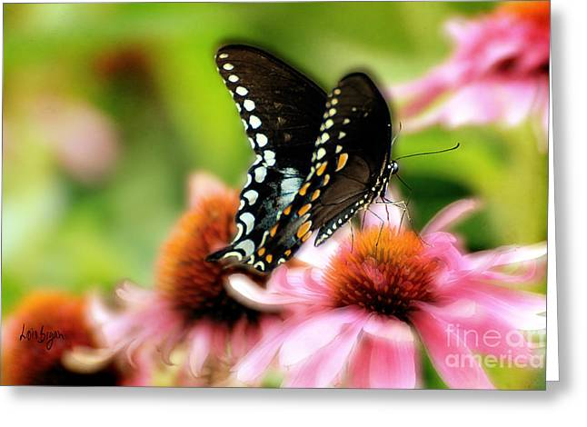 Butterfly On Flower Greeting Cards - Tasty Greeting Card by Lois Bryan