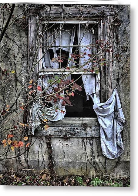 Tattered Curtain Fall '09 No.2 Greeting Card by Sari Sauls