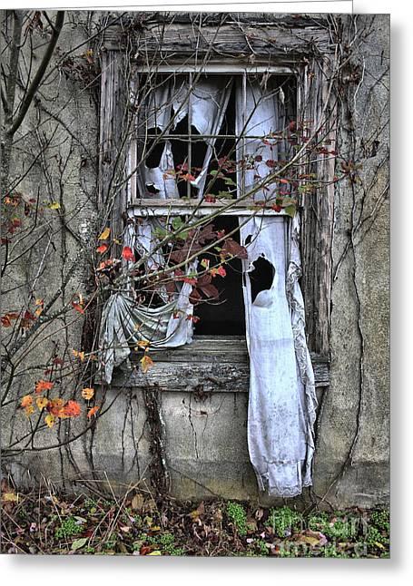 Tattered Curtain Fall '09 No.3 Greeting Card by Sari Sauls