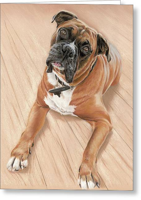 Pet Portraits Pastels Greeting Cards - Taz my best friend Greeting Card by Vanda Luddy