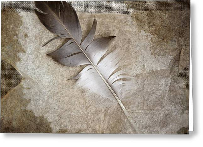 Woven Greeting Cards - Tea Feather Greeting Card by Carol Leigh