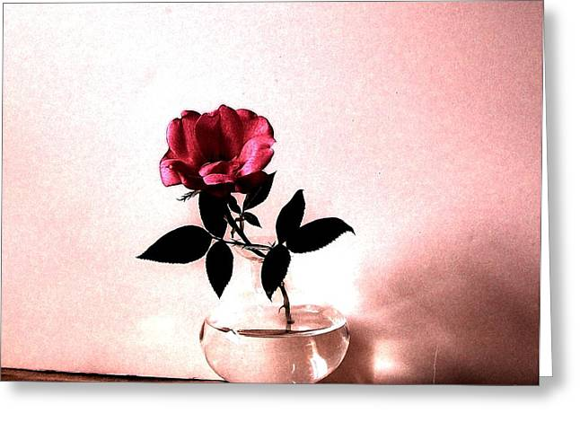 Tea Rose Greeting Card by Marsha Heiken
