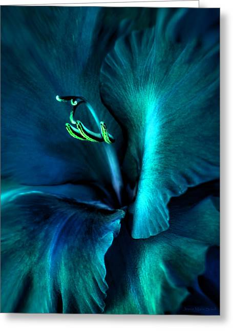 Teal Gladiola Flower Greeting Card by Jennie Marie Schell