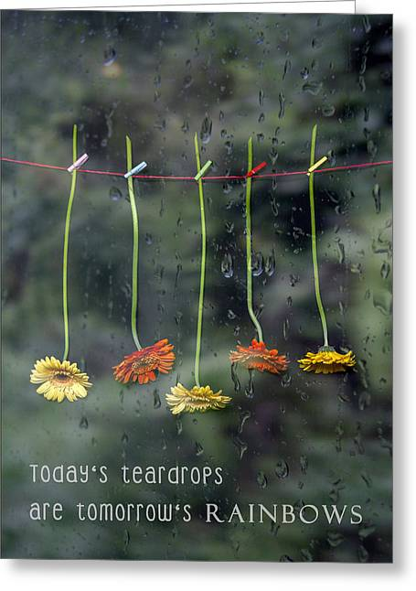 Gerbera Greeting Cards - Teardrops Greeting Card by Joana Kruse