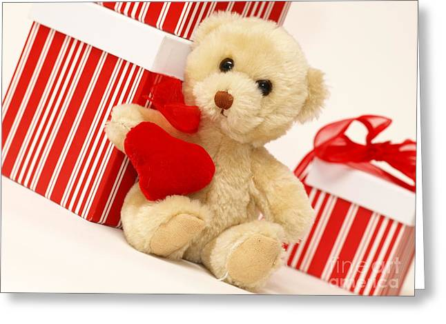 Valerie Morrison Greeting Cards - Teddy Bear Greeting Card by Valerie Morrison