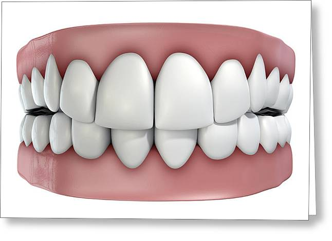 Teeth Set Isolated Greeting Card by Allan Swart