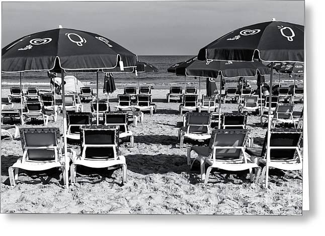 Tels Greeting Cards - Tel Aviv Beach Chairs Greeting Card by John Rizzuto