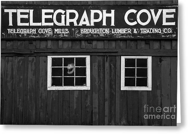 Telegraph Cover Sign Black And White Greeting Card by Adam Jewell