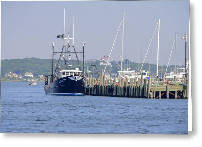 Masts Greeting Cards - Tenacity Greeting Card by Keith Armstrong