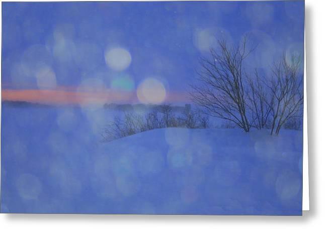 Snowstorm Greeting Cards - Tender Tears of Winter Greeting Card by Julie Lueders