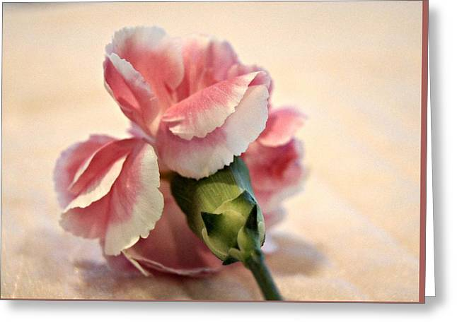 Tenderly Greeting Card by Kathy Bucari