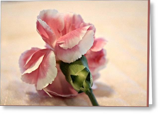 Tenderly Greeting Cards - Tenderly Greeting Card by Kathy Bucari