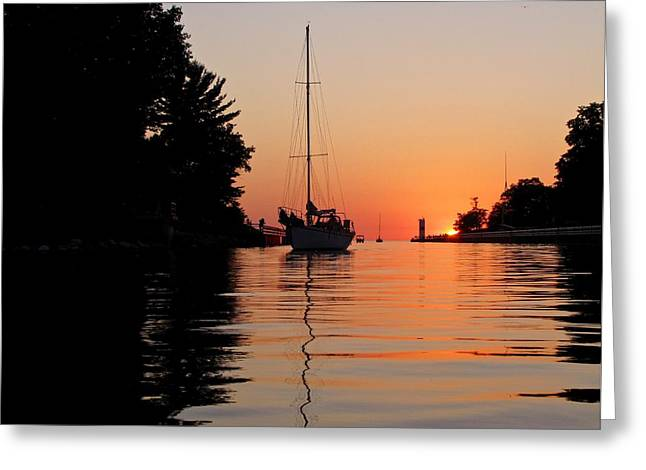 Sailboats In Water Greeting Cards - Tengus is in Town Greeting Card by Jane Greiner