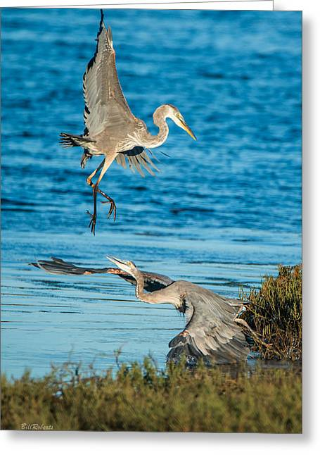 Moss Landing California Greeting Cards - Territorial Tiff  Greeting Card by Bill Roberts