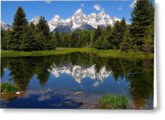 Reflection In Water Greeting Cards - Teton Reflection Greeting Card by Alan Lenk