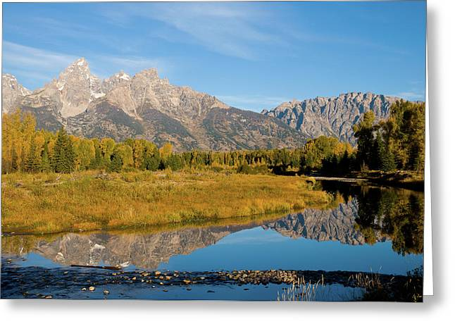 Teton Reflections Greeting Card by Steve Stuller