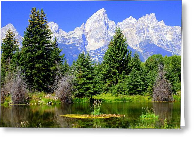 Marty Koch Greeting Cards - Tetons 3 Greeting Card by Marty Koch