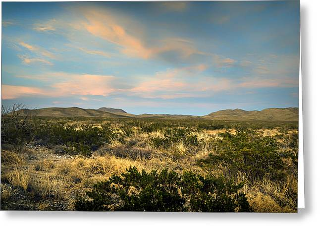Historic Site Greeting Cards - Texan Vista Greeting Card by Mountain Dreams