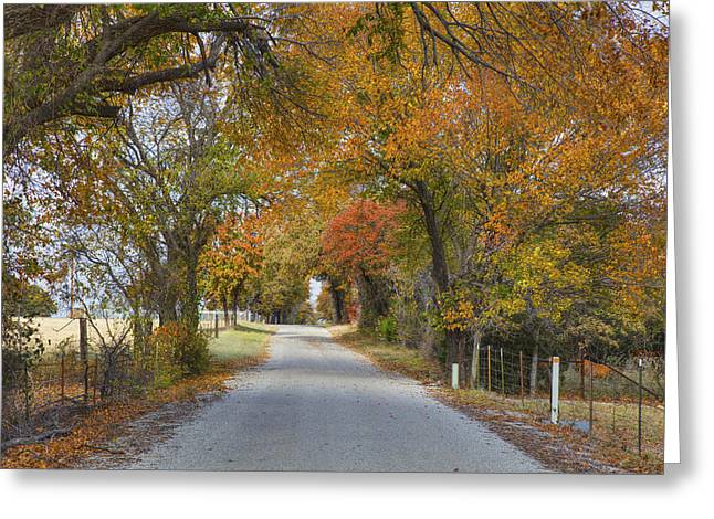 Texas Country Road In Autumn 1 Greeting Card by Rob Greebon