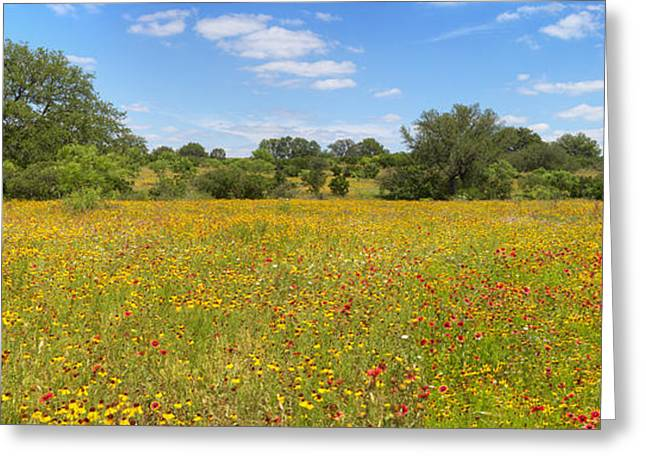 Texas Hill Country Landscape Greeting Cards - Texas Hill Country Afternoon 1 Greeting Card by Rob Greebon