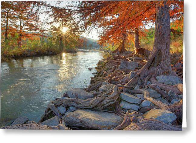 Texas Hill Country Fall Colors 1 Greeting Card by Rob Greebon