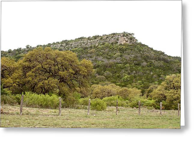 Twisted Sister Greeting Cards - Texas Hill Country Greeting Card by Samantha Davis