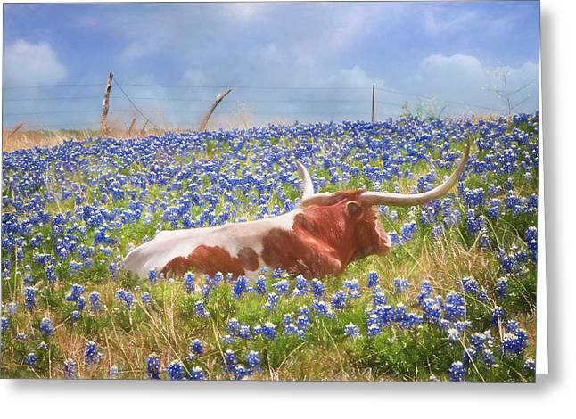 Steer Greeting Cards - Texas Is Longhorns and Bluebonnets Greeting Card by David and Carol Kelly