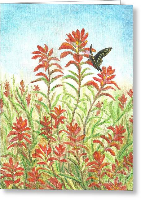 Spring Pastels Greeting Cards - Texas Paintbrush Sipper Greeting Card by Sue Bonnar