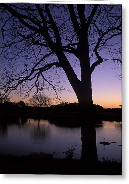 Texas Sunset On The Lake Greeting Card by Kathy Yates